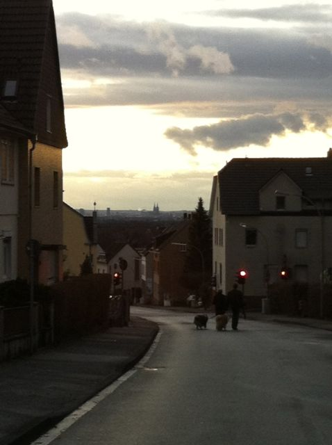 View of Cologne from near my aunt's retirement home.