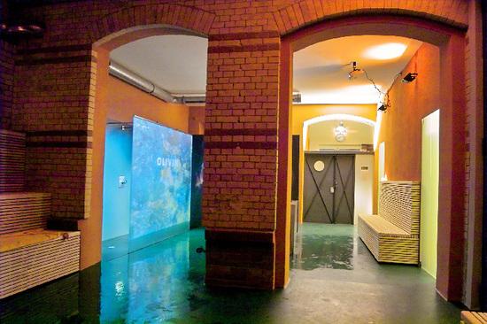 Olivin sauna interior with shower